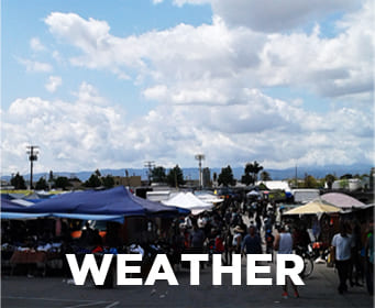 Home | Sanfernando Swap Meet